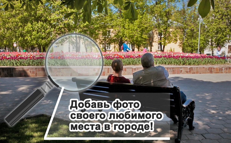 В официальной группе администрации Тулы ВКонтакте проходят фотоконкурсы