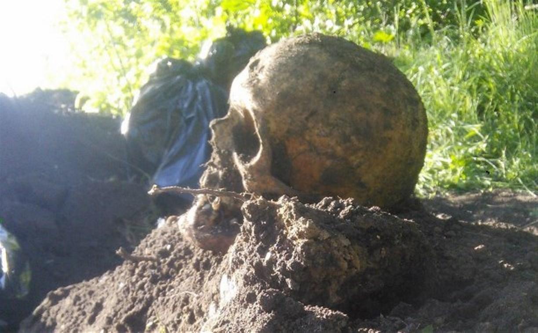 Немецкое захоронение в Тульской области: Найденные останки перевезут на сборное кладбище