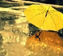 Погода в Туле 28 августа: гроза и дождь