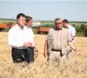 Владимир Груздев пообещал помочь «Белёвским овощам»
