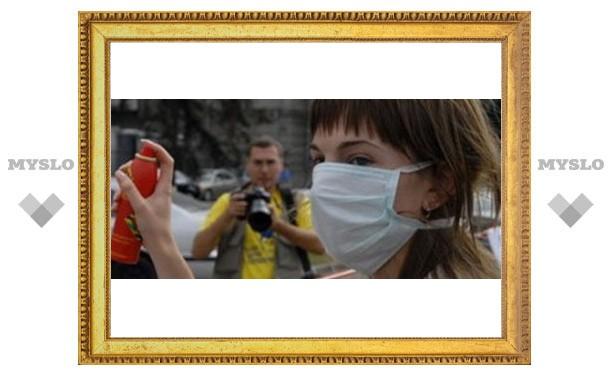 В Туле удвоилось число заболевших свиным гриппом