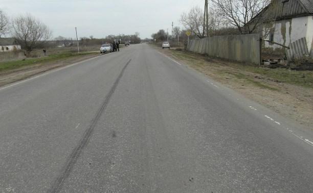 Под Богородицком водитель насмерть сбил 7-летнюю девочку