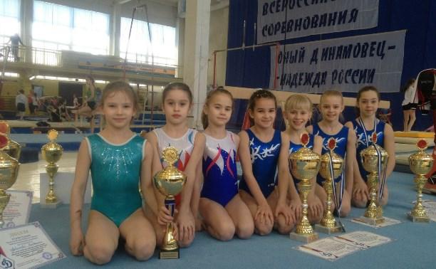 Тульские гимнасты завоевали награды в Брянске