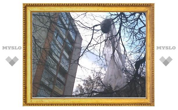 Туляки выбрасывают мусор прямо из окна