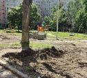 Тулячка о варварском благоустройстве двора: вырубить деревья все равно что легкие отрезать