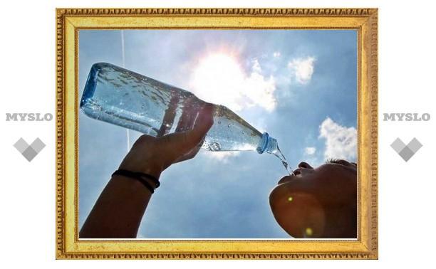 Тульская жара идет на рекорд