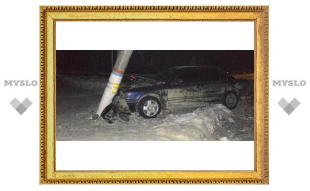 Тульский водитель снес столб