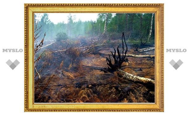 В России возросло число крупных пожаров