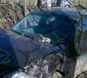 В ДТП под Алексином пострадала 14-летняя девочка