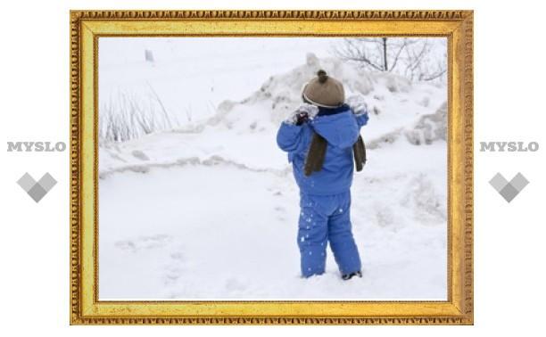 5-летнего малыша из Киреевского района забыли в заснеженном поле?