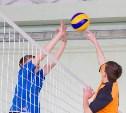 Тульских школьников приглашают поучаствовать в волейбольном турнире «Серебряный мяч»