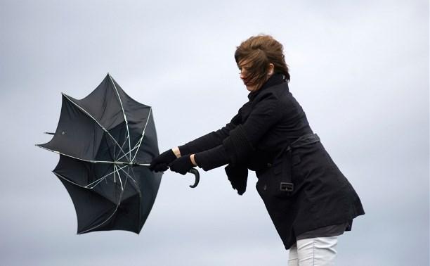 9 апреля в Тульской области вновь ожидается порывистый ветер