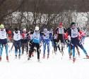 Тульская «Лыжня России-2016» бьёт рекорды