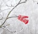 На выходные в Туле обещают потепление и снегопад