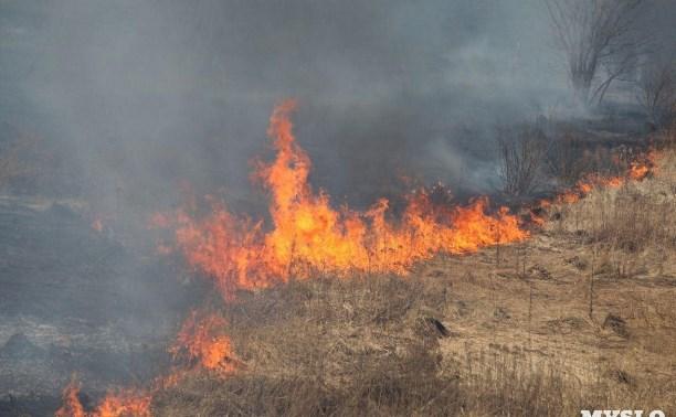 В Тульской области сохраняется высокий уровень пожарной опасности
