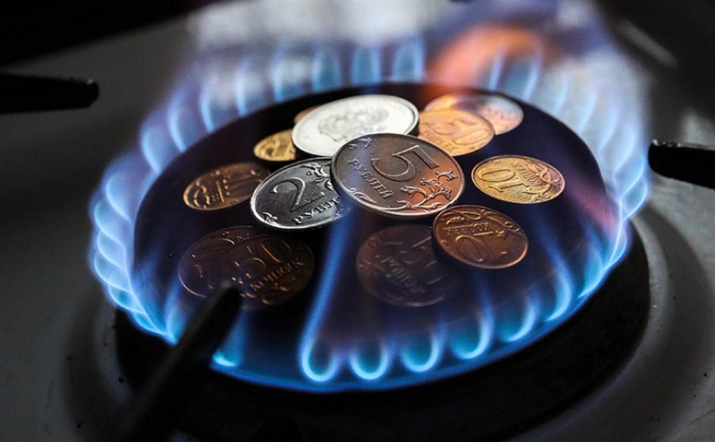 Жители Тульской области задолжали за газ 214,5 млн рублей