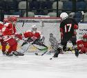 В Туле завершился региональный этап соревнований среди юных хоккеистов «Золотая шайба»
