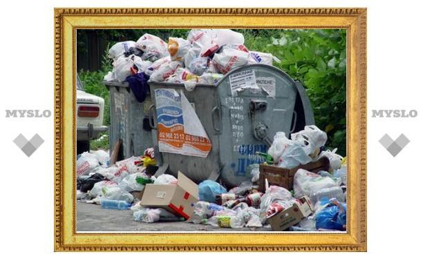 В Туле увеличат нормы накопления бытовых отходов