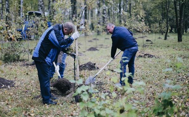 Акция «Сохраним лес»: в Тульской области высадят 20 тысяч деревьев и кустарников