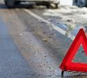 Тульская полиция разыскивает очевидцев смертельного ДТП около заправки на М2