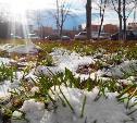 Погода в Туле 29 марта: +9 градусов и без осадков
