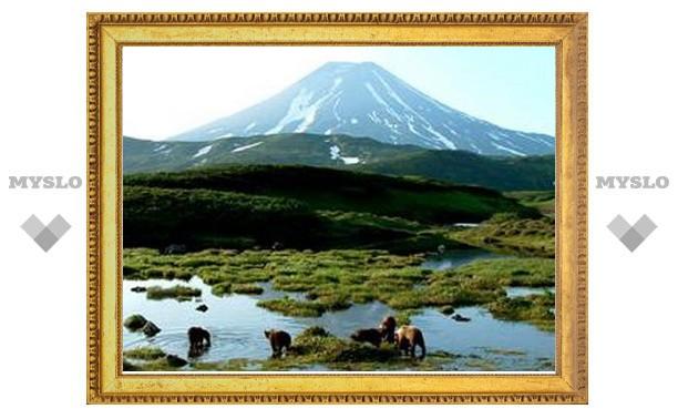 Среди пропавших на Камчатке туристов были туляки
