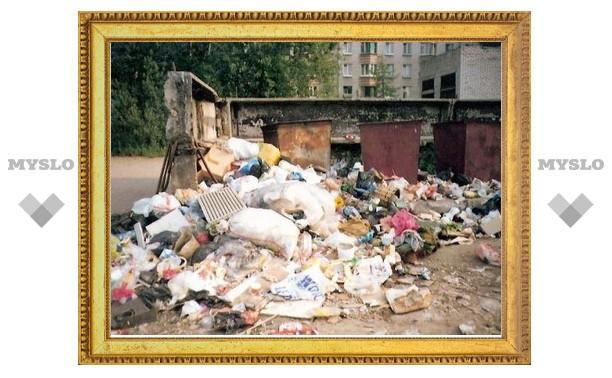 В Туле произошел срыв вывоза бытовых отходов