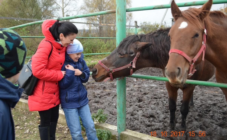 Тульские дети с особенностями развития покатались на лошадях в «Деревне»