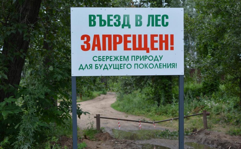 Тулякам запретили ездить в лес