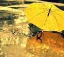 На следующей неделе в Тульской области будет дождливо