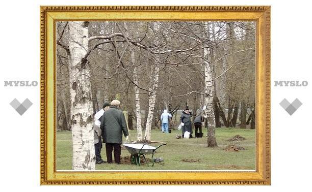 В Ясной Поляне посадили 600 молодых берез