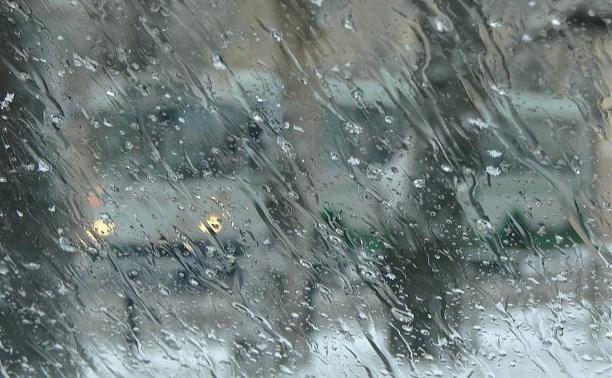 Погода в Туле 30 ноября: облачно, мокро и ветрено