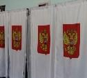 Выборы депутатов Государственной Думы: жалоб нет