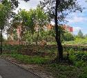 В Платоновском парке начали строить площадку для выгула собак