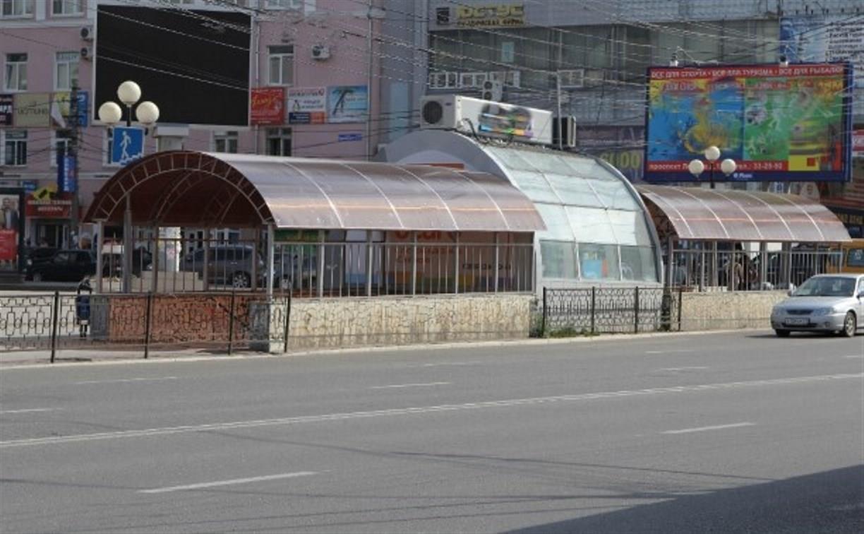 Наземный переход и туалеты: «Городские проекты» просят убрать подземку на ост. «Ул. Каминского» в Туле