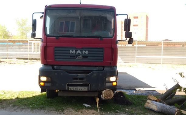 Под Тулой грузовик сбил дерево, и оно упало на пожилую женщину