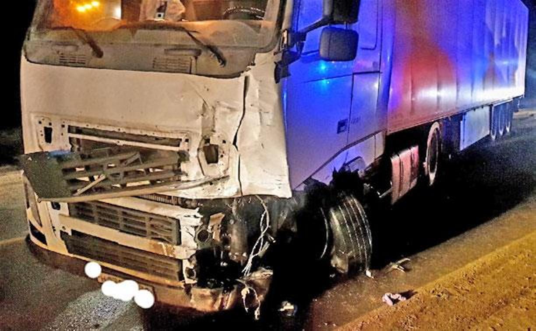Смертельное ДТП в Ефремовском районе: водитель кроссовера выехал на встречку