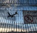 Россияне смогут погасить штрафы в аэропорту перед вылетом