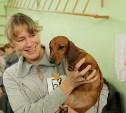 В Новомосковске пройдёт региональная выставка собак