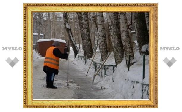 Тулякам предоставят график уборки дворов