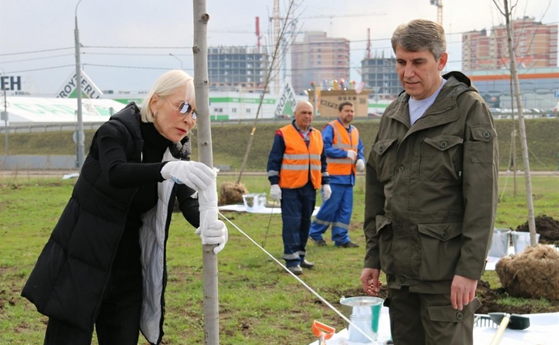Надежда Школкина и Дмитрий Миляев высадили клены возле Ледового дворца