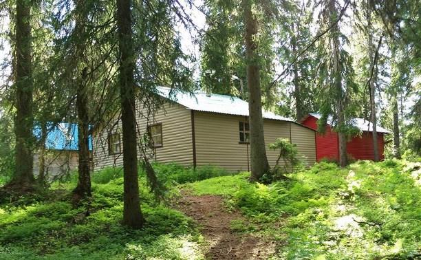 Представители цыганской диаспоры захватили три гектара яснополянского леса