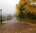 Погода в Туле 3 октября: холодно, пасмурно, без осадков