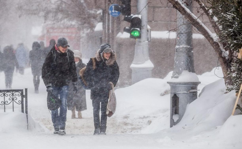 Погода в Туле 12 февраля: метели, снежные заносы и ветер