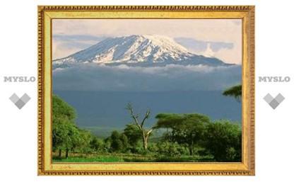 Деревья оказались хранителями снегов Килиманджаро