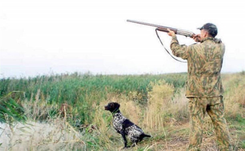 С 18 августа в Тульской области открывается сезон охоты на пернатую дичь
