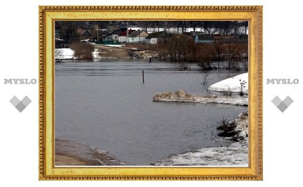 Под Тулой уровень воды в реке Упе достиг полуметра