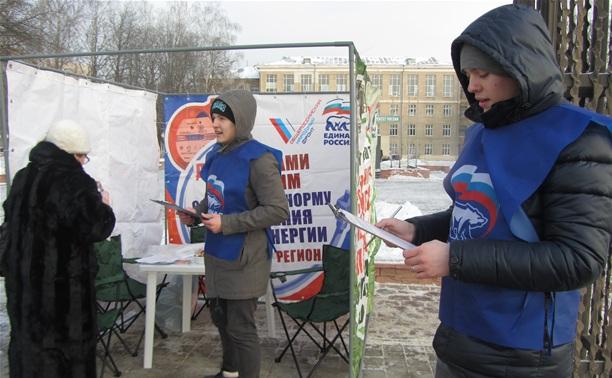 Единороссы провели пикет в поддержку увеличения соцнормы на электроэнергию
