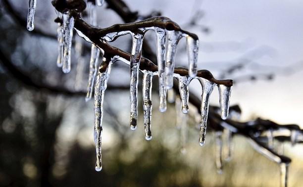 Погода в Туле 4 декабря: облачно, без осадков, до +2 градусов