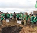 На Куликовом поле активисты высадили 2000 молодых деревьев
